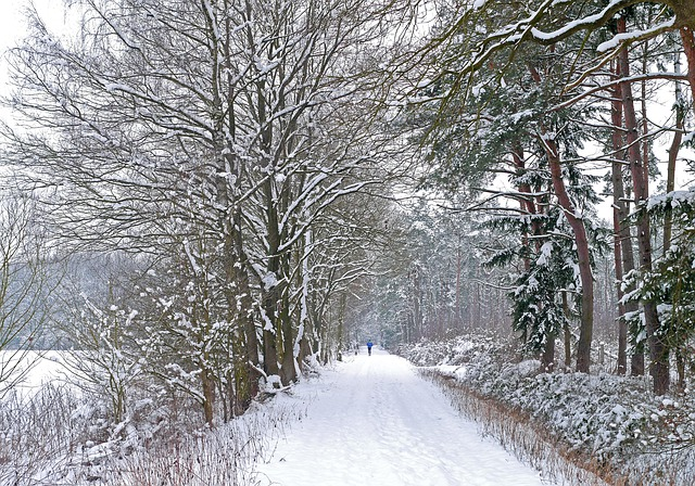Winterjoggen
